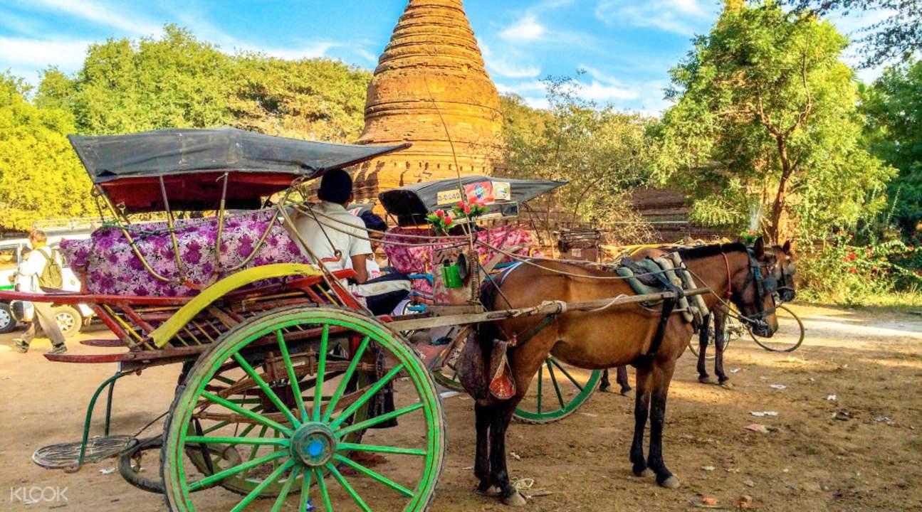 horse cart sunset ride bagan