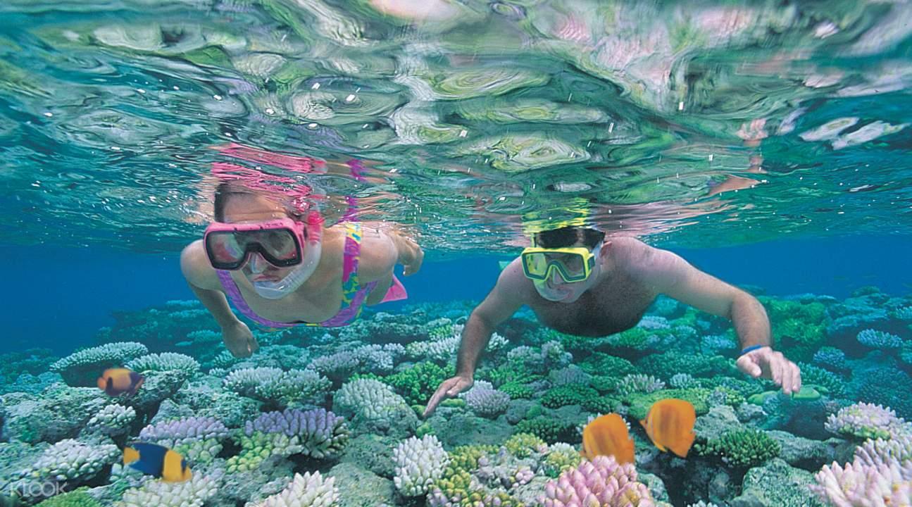 银梭号外堡礁游船库兰达热带雨林体验两日游,库兰达热带国家公园,阿金考特礁