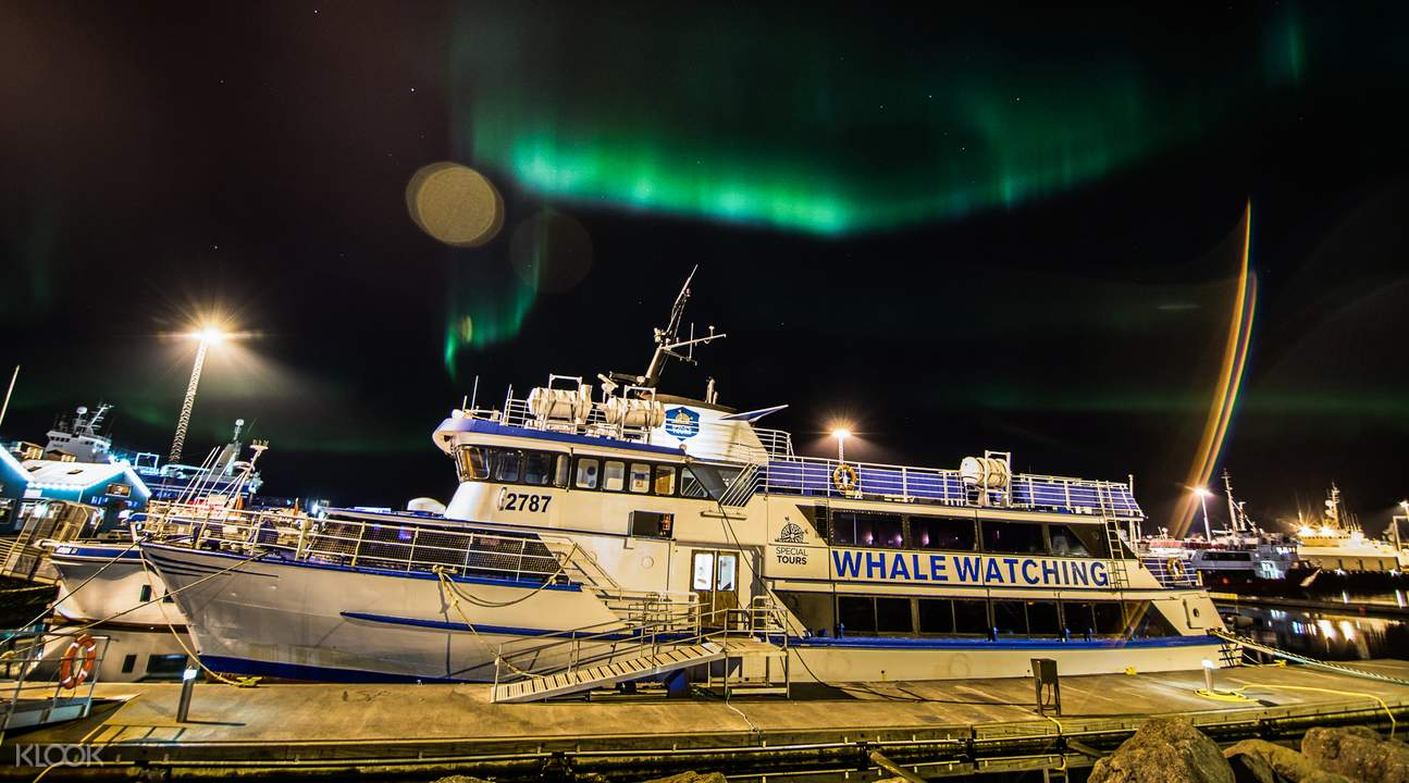 Northern Lights by Boat
