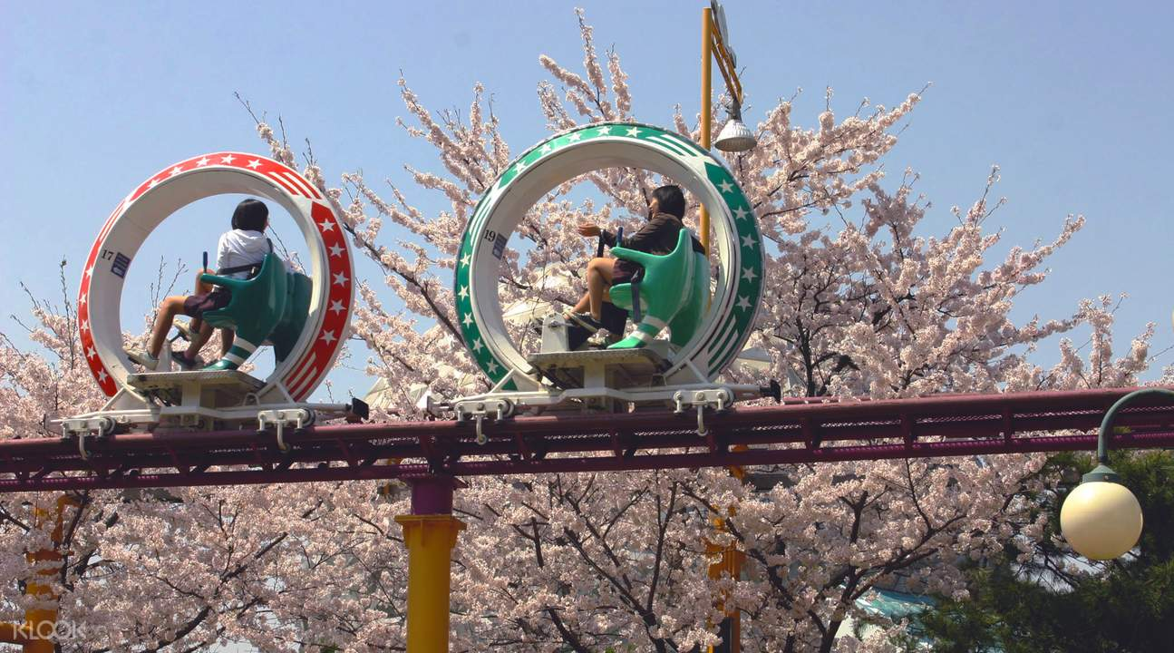 Seoul Land Theme Park Discount Tickets in Gyeonggi-do - Klook