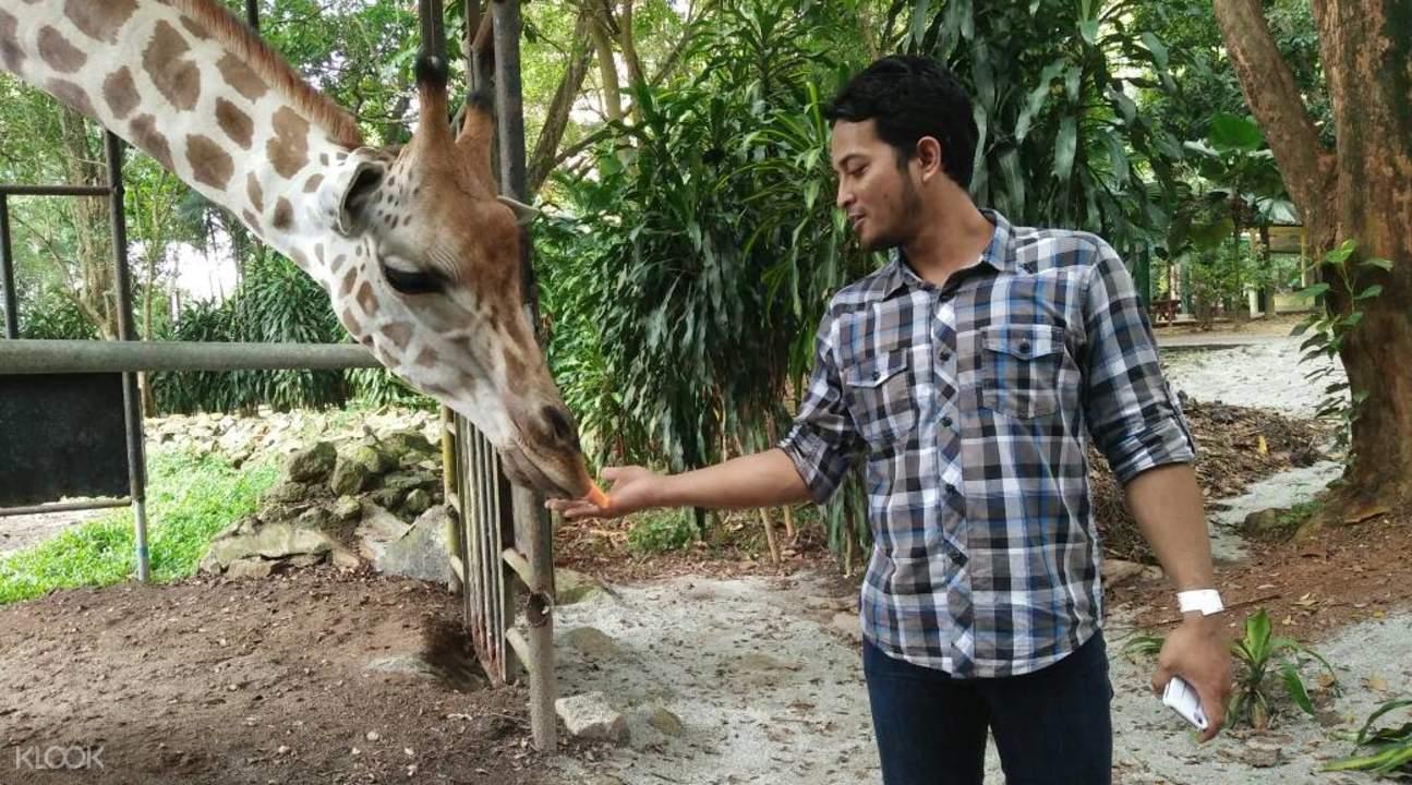 melaka zoo admission ticket melaka