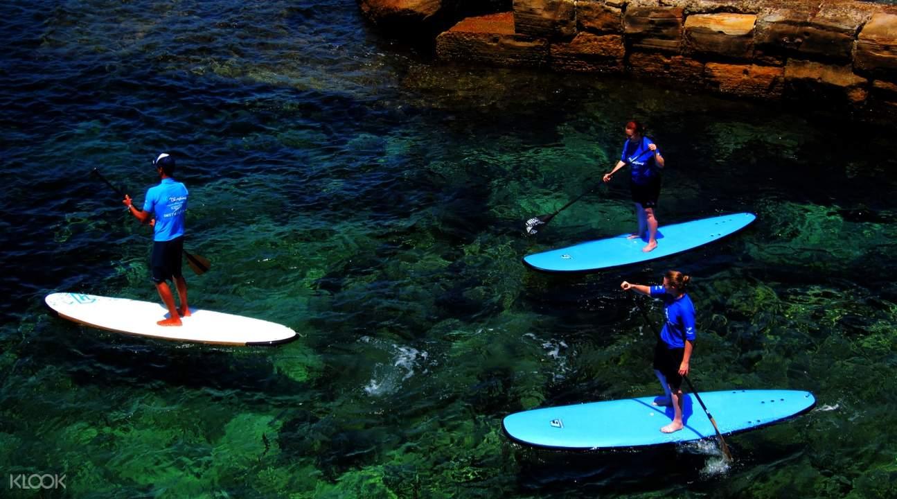 group SUP lesson Sydney