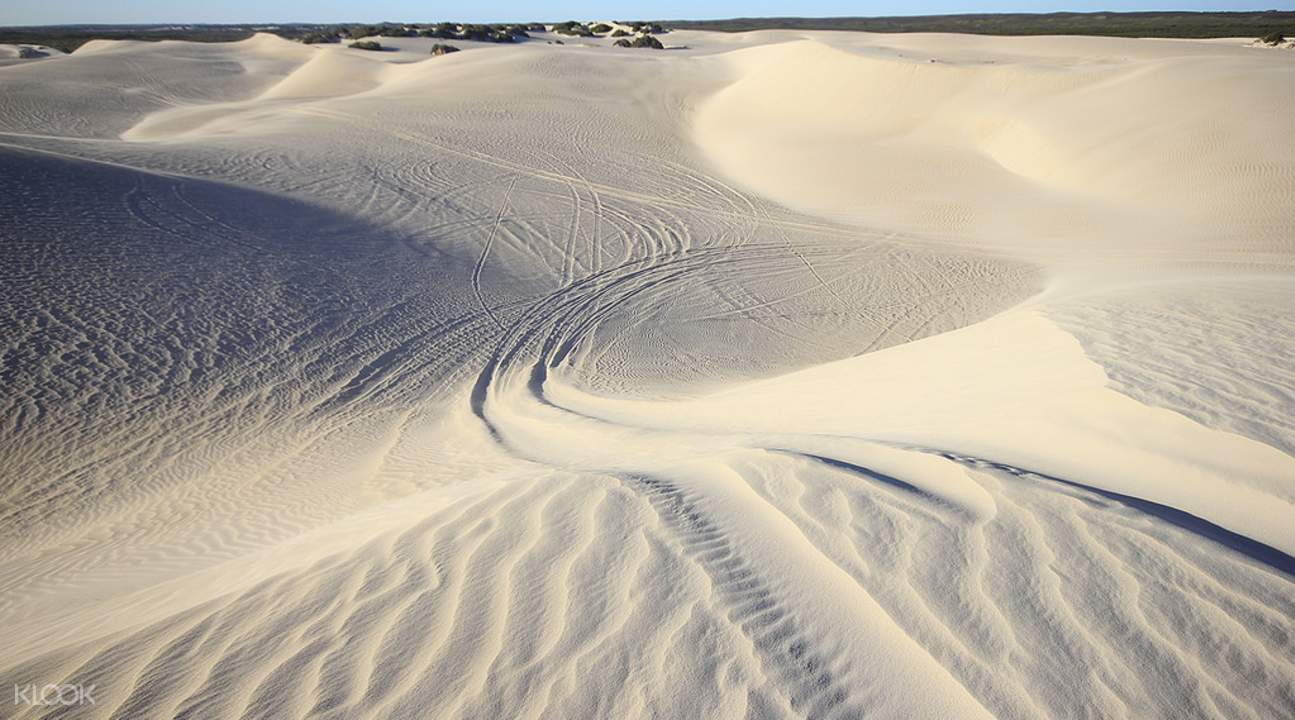 Pinnacle Desert Explorer with Lancelin Sandboarding