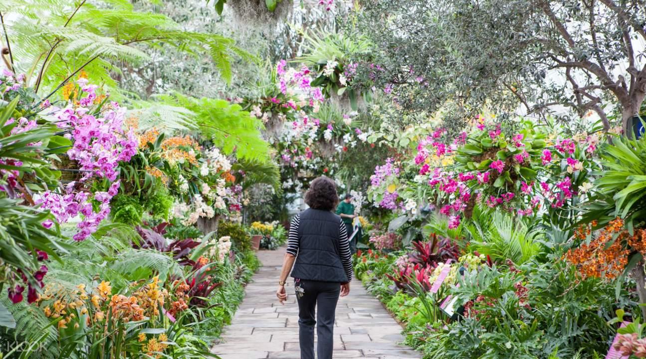 botanical garden ticket