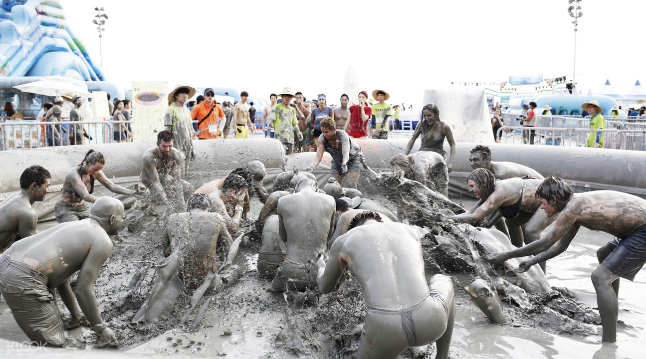 boryeong mud festival bus
