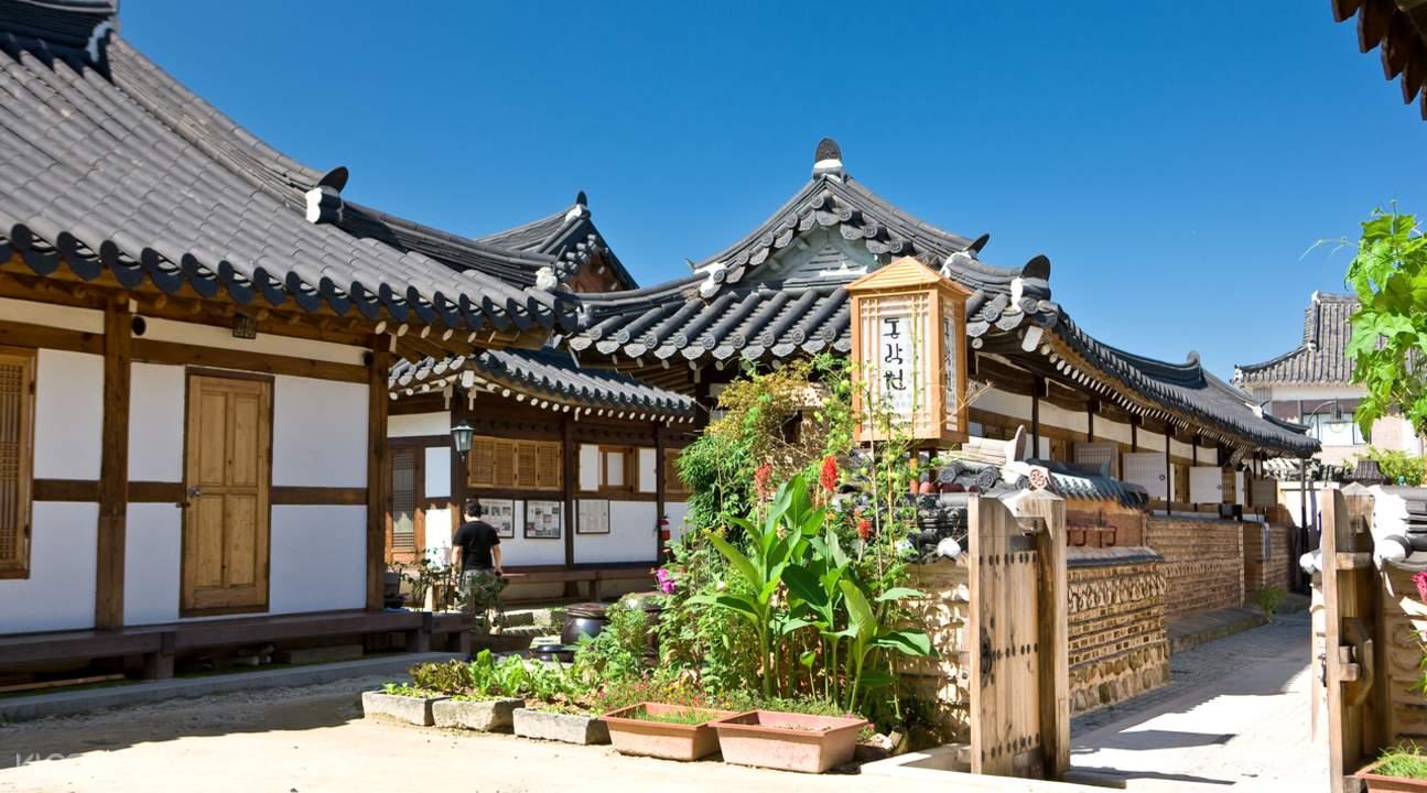 鸡龙山赏樱 & 全州韩屋村