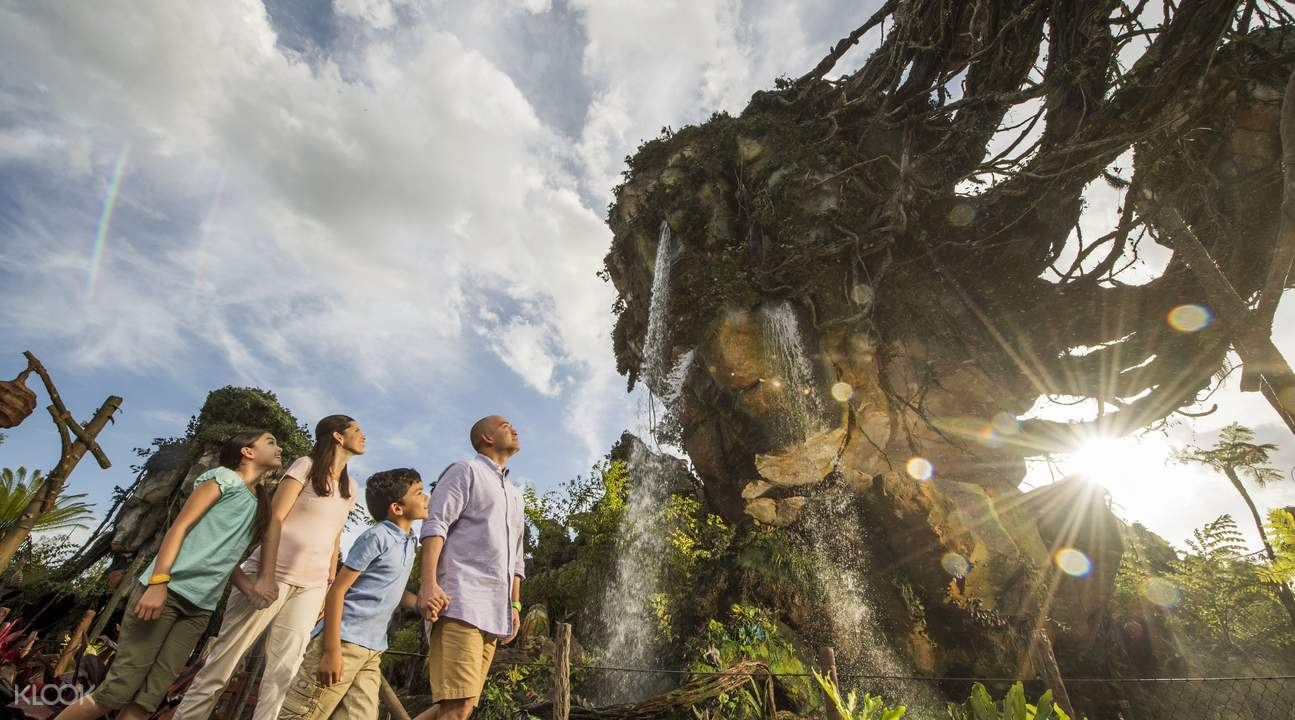 Walt Disney World multi-day pass