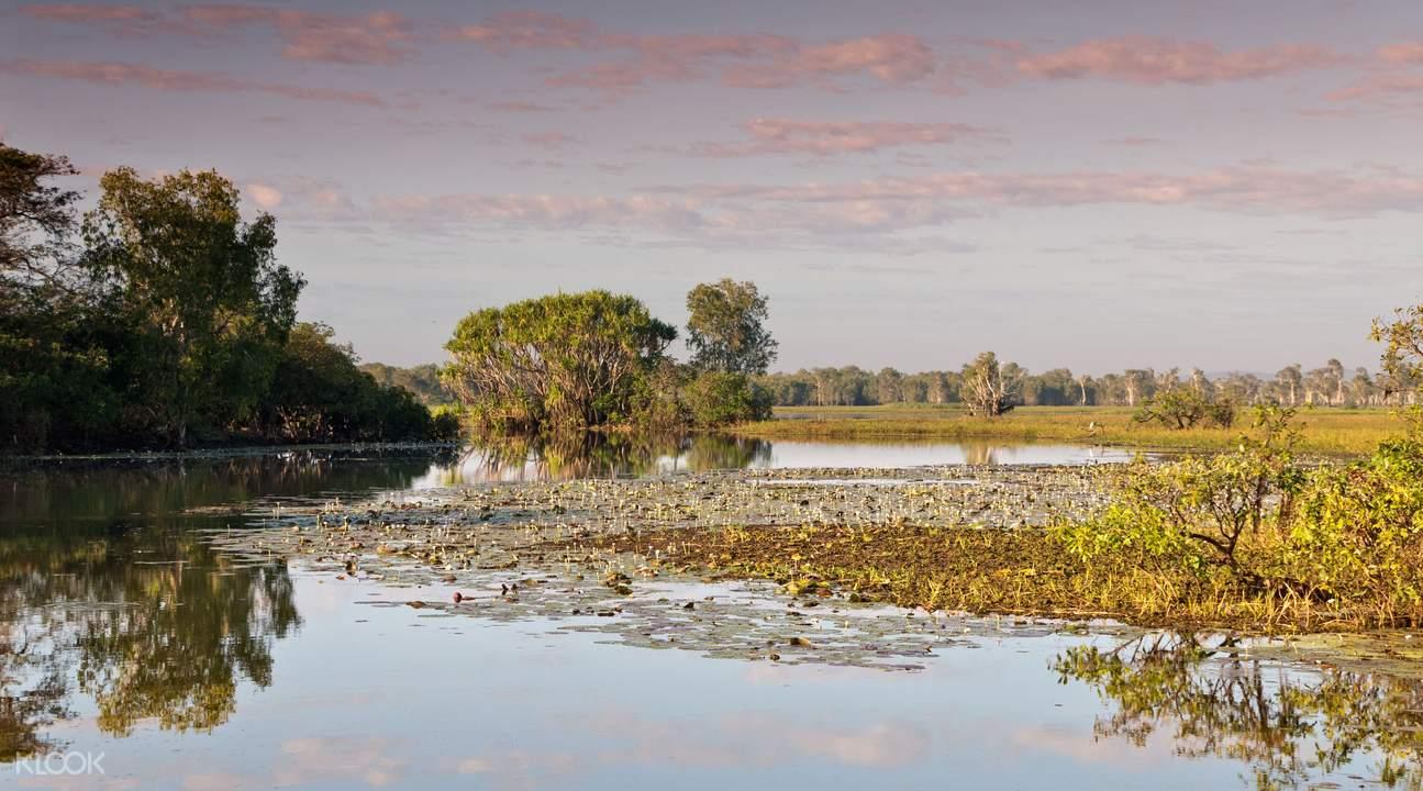 玛丽河湿地