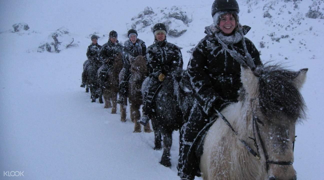 冰岛雷克雅未克  骑马体验