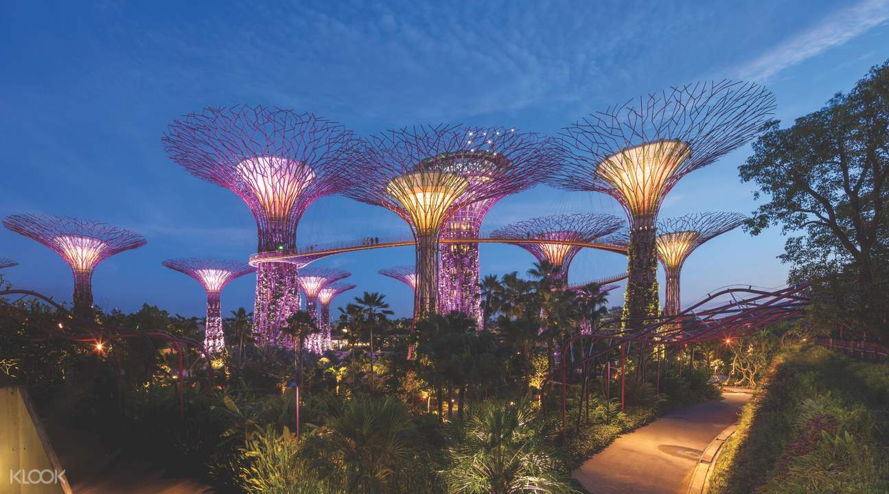 Singapore Flyer Gardens by the Bay Admission Tickets