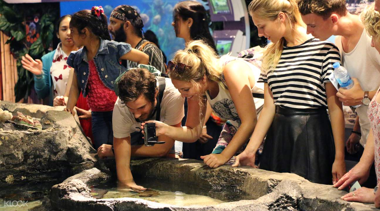 Gene pool aquarium klcc