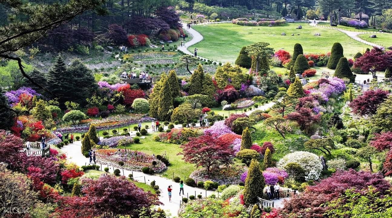 韩国首尔南怡岛 & 晨静树木园一日游 - Klook客路