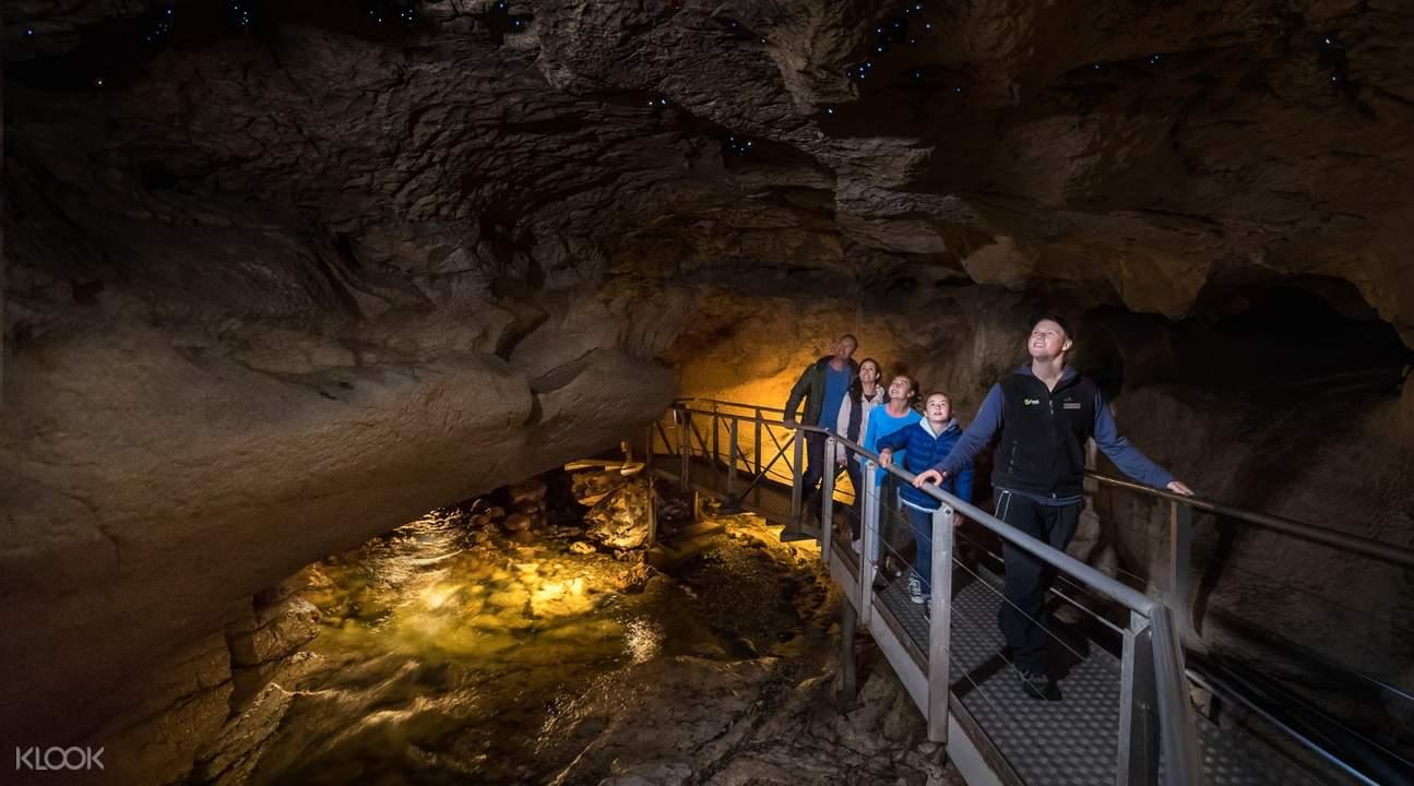 蒂阿瑙螢火蟲洞穴