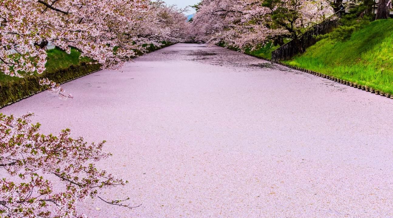 Hirosaki Moat