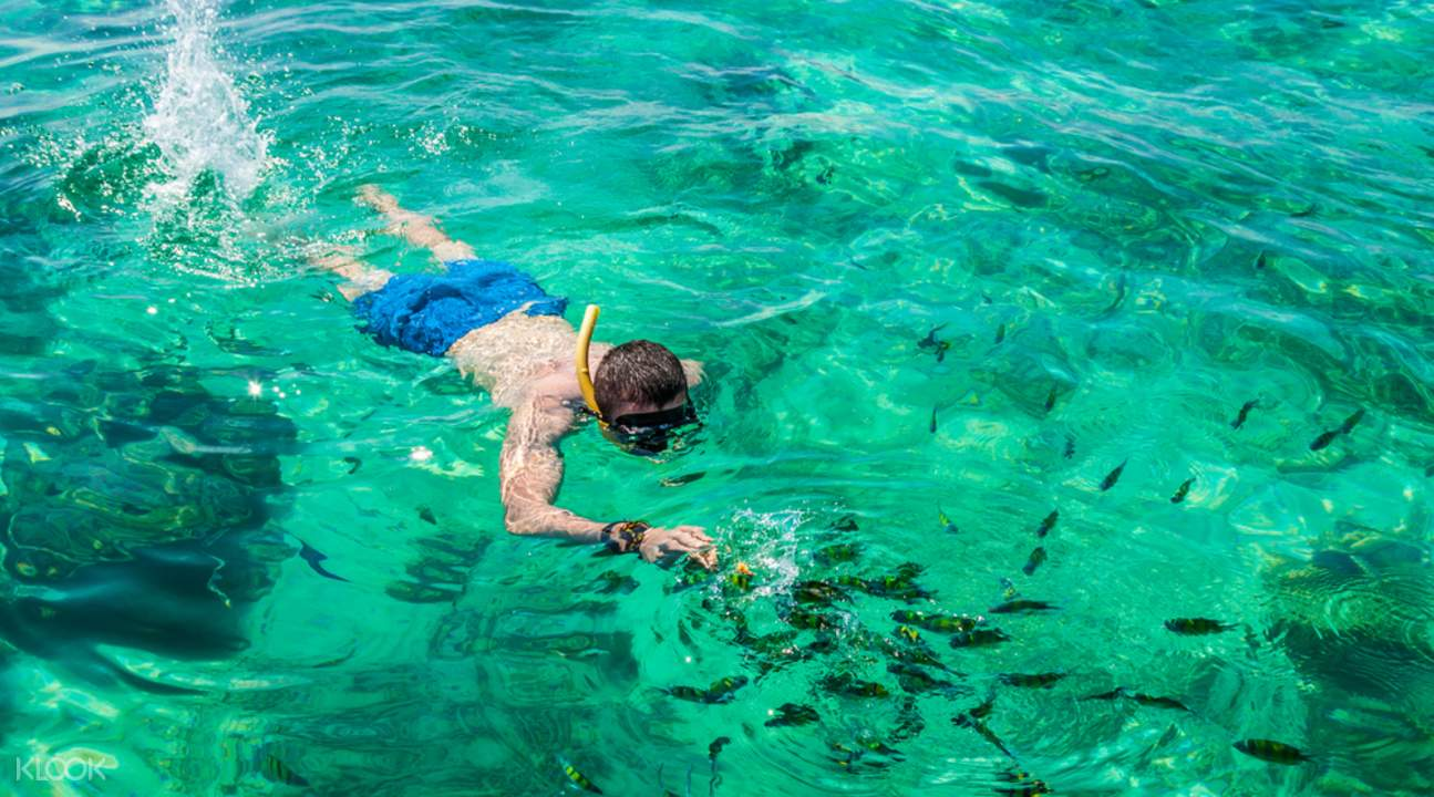 maya bay speedboat tour, phi phi island snorkelling, phi phi island speedboat tour