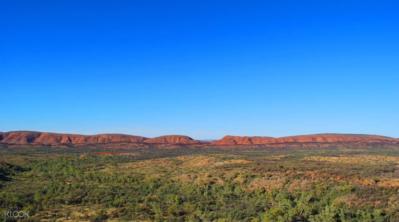 澳大利亞棕櫚谷