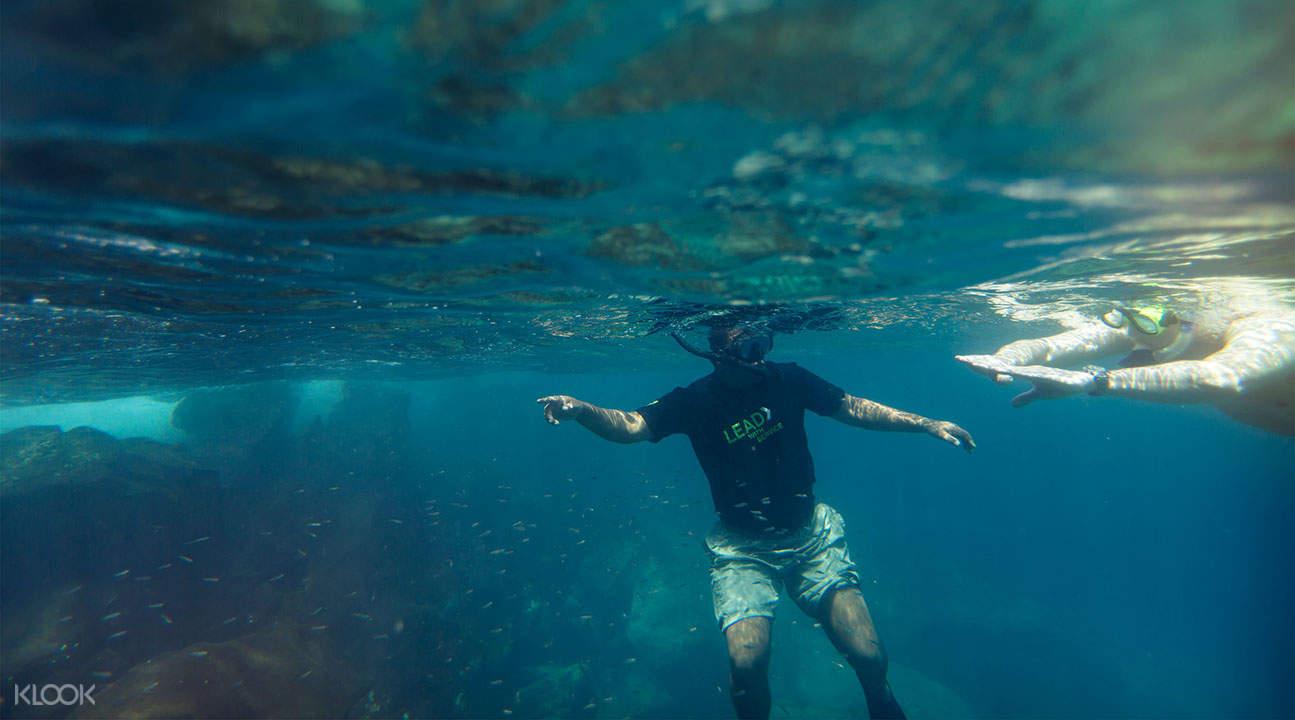 kaelakua bay snorkeling