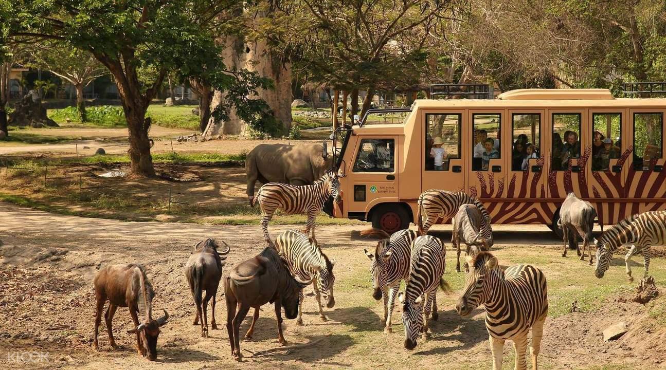 Jungle Safari Bali Safari and Marine Park Tickets (Domestic Rate) Indonesia