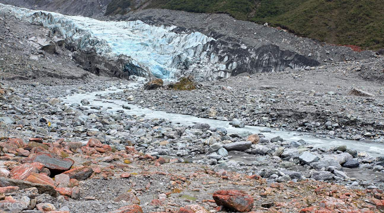 fox glacier face walk