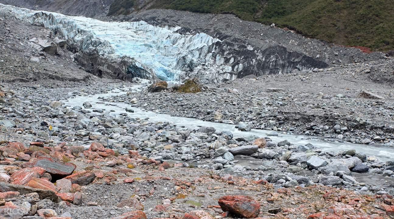 fox glacier face walk