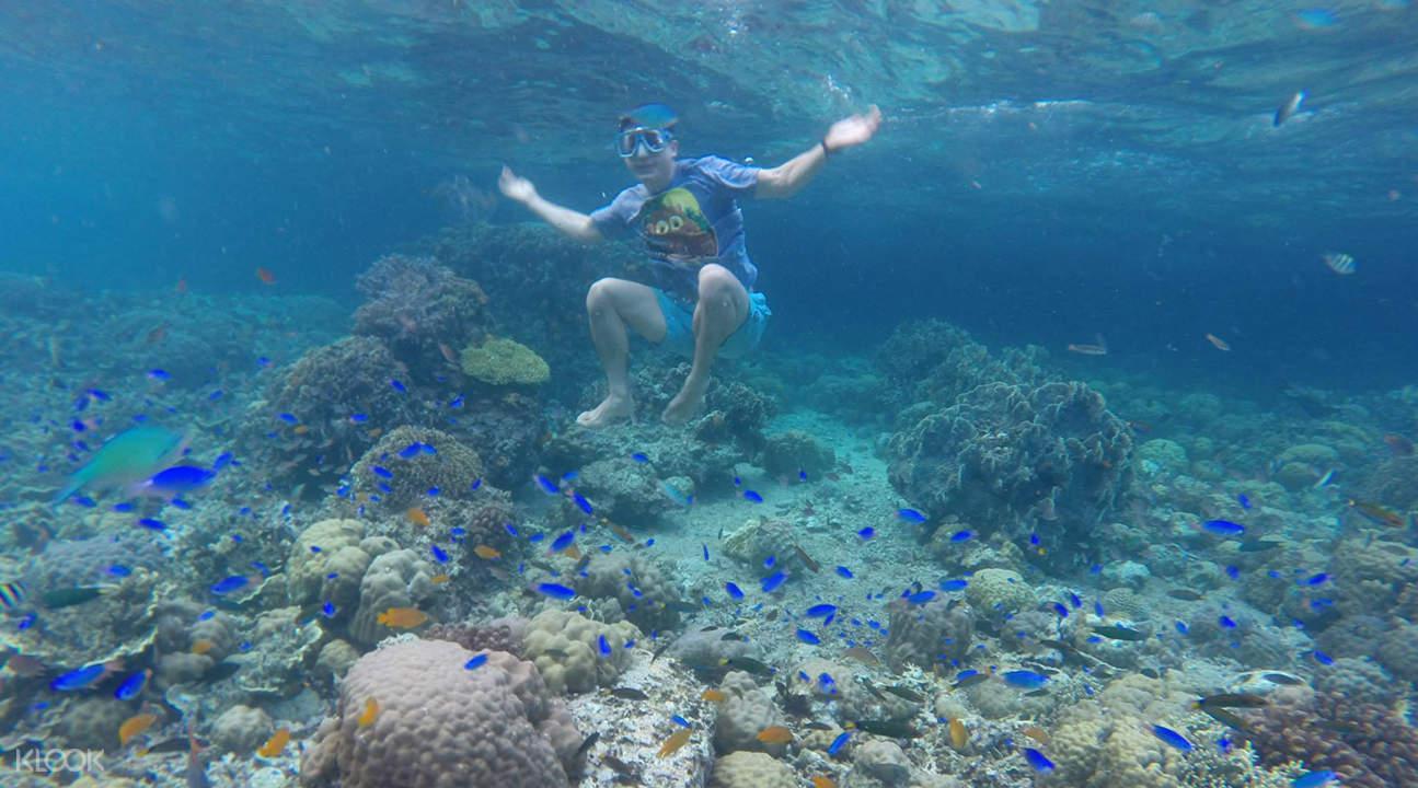 pescador island snorkeling