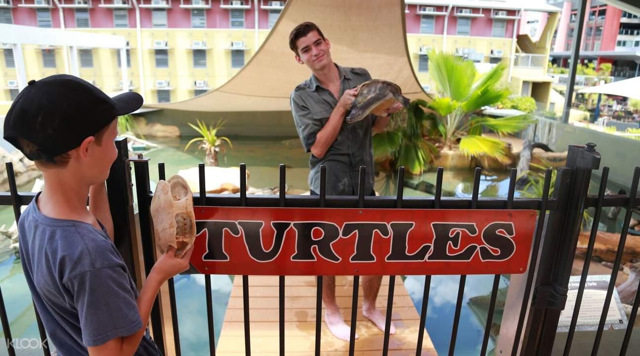 海龜保護區