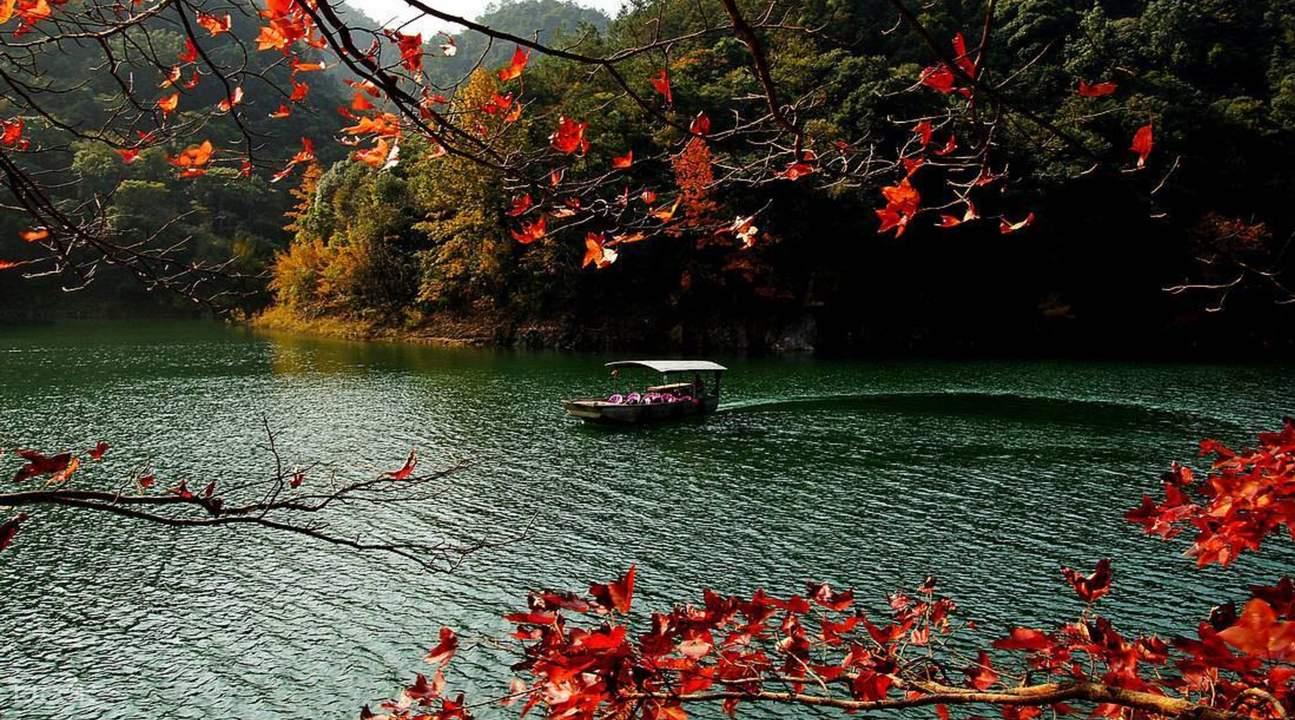 Luixihe forest reserve Guangzhou