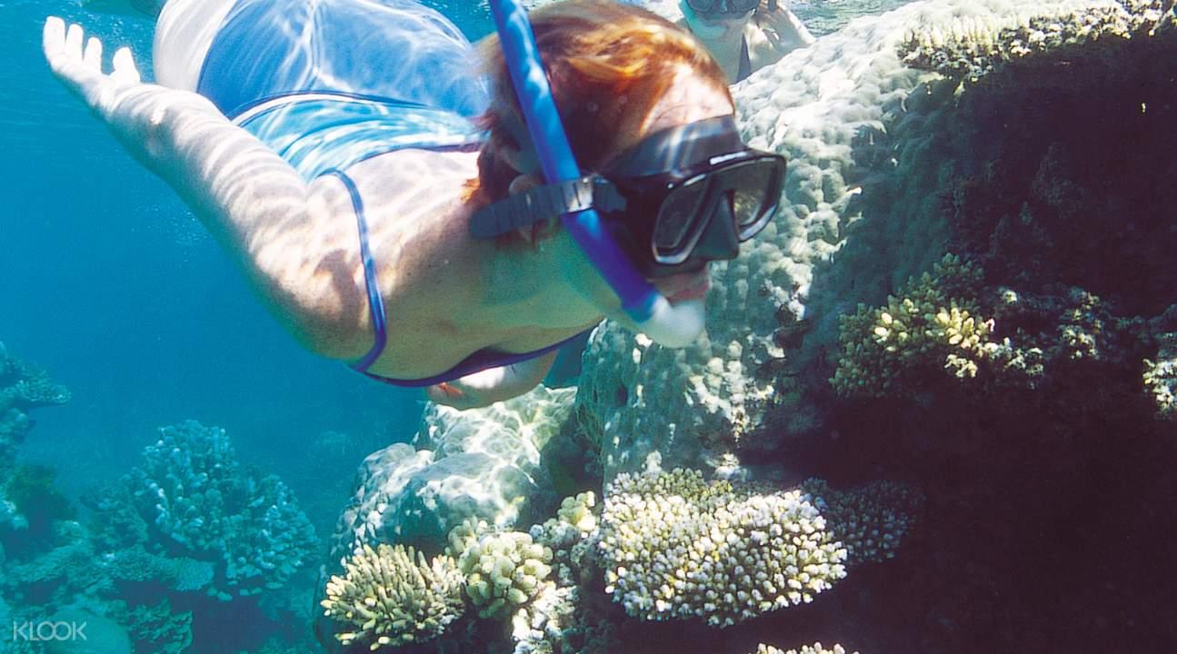 Great Barrier Reef Outer Barrier Reef Platform