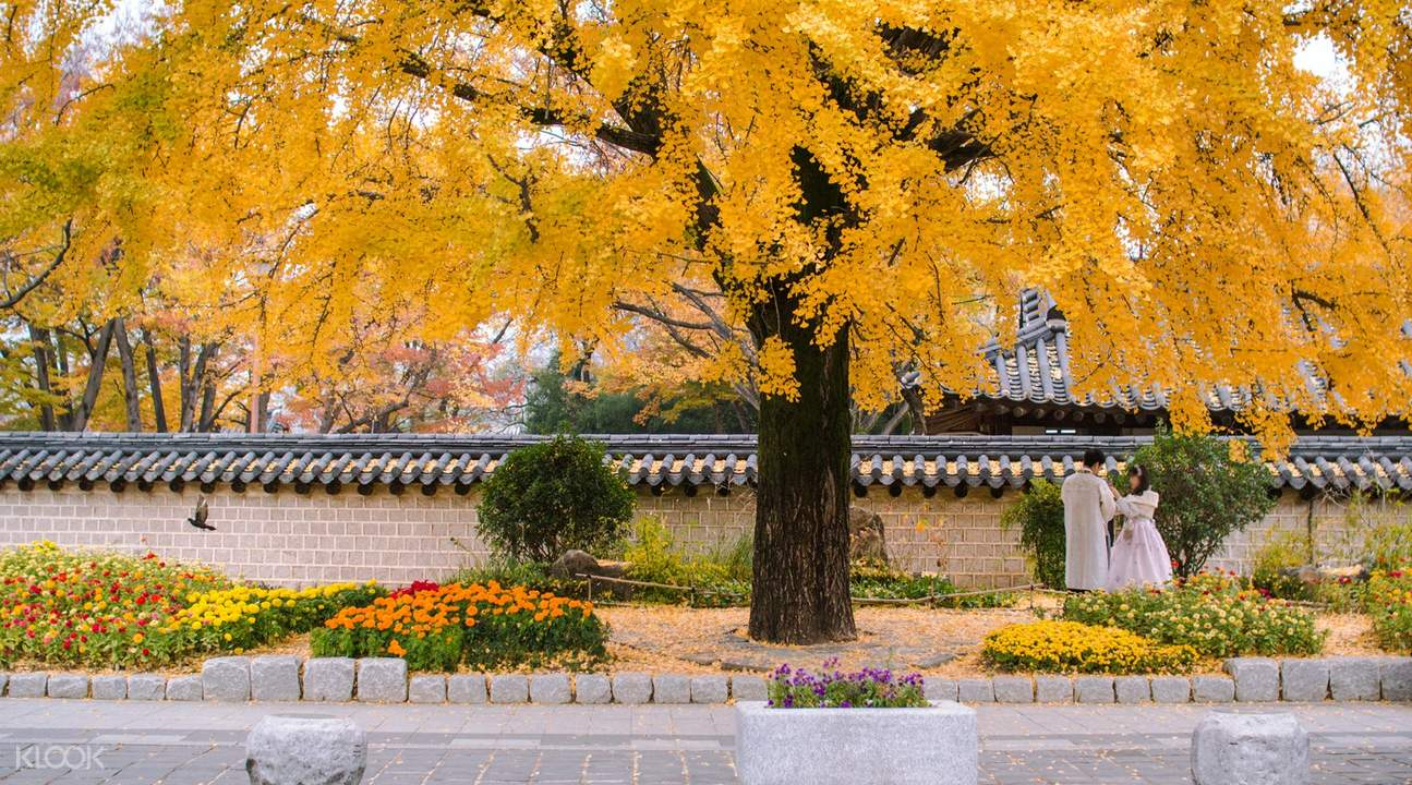Jeonju attractions