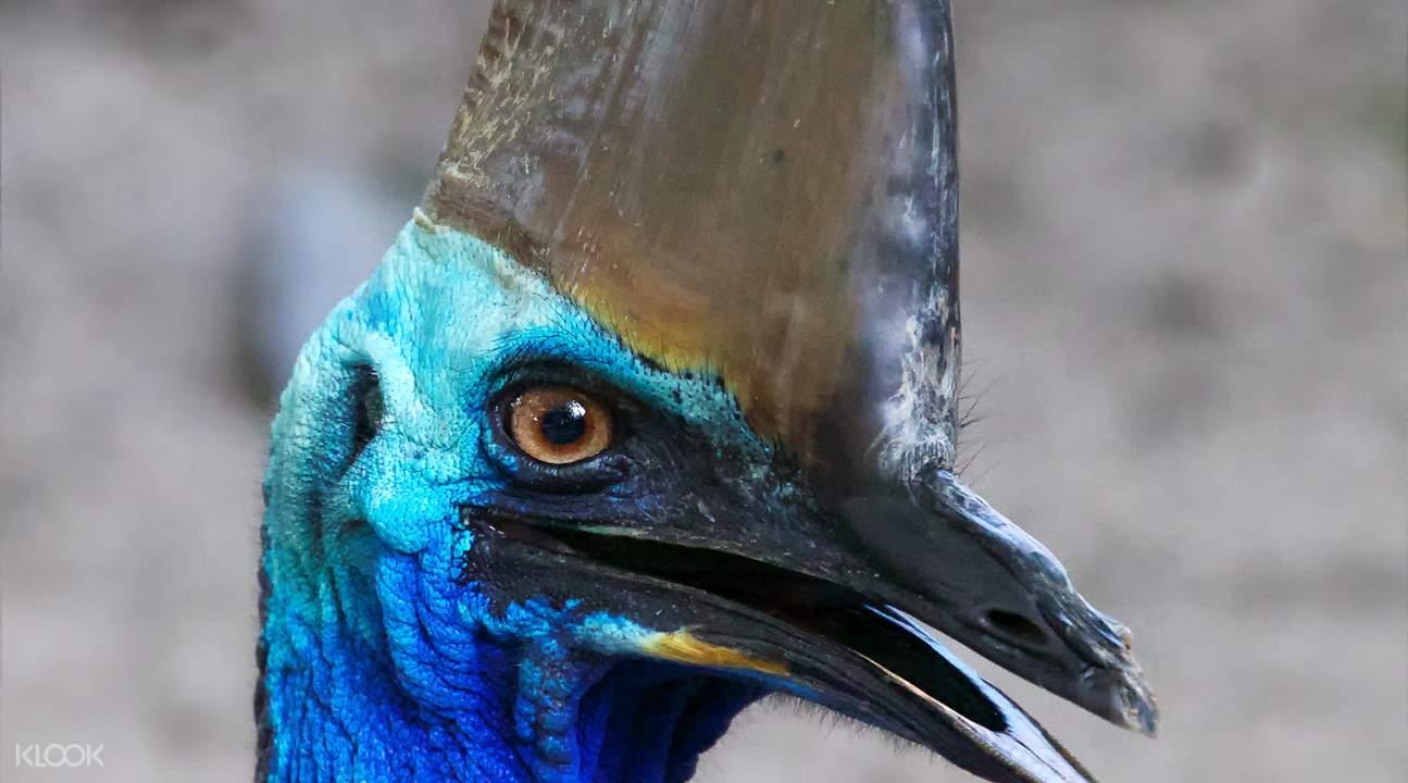 道格拉斯港野生動物棲息地門票