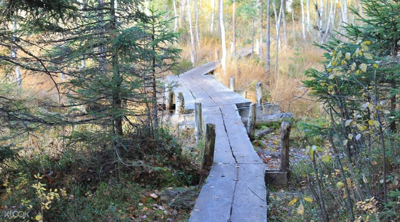 哈尔蒂亚( Haltia )芬兰自然中心徒步之旅