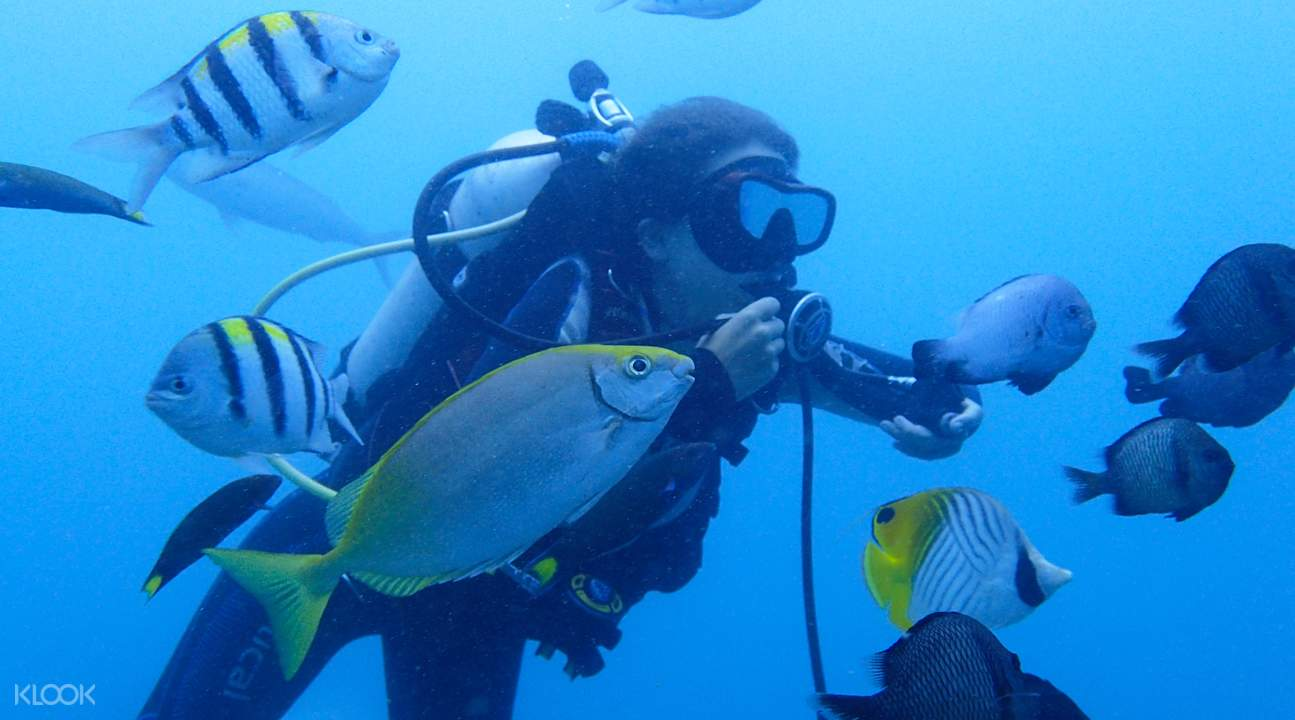 Scuba diving classes Taiwan