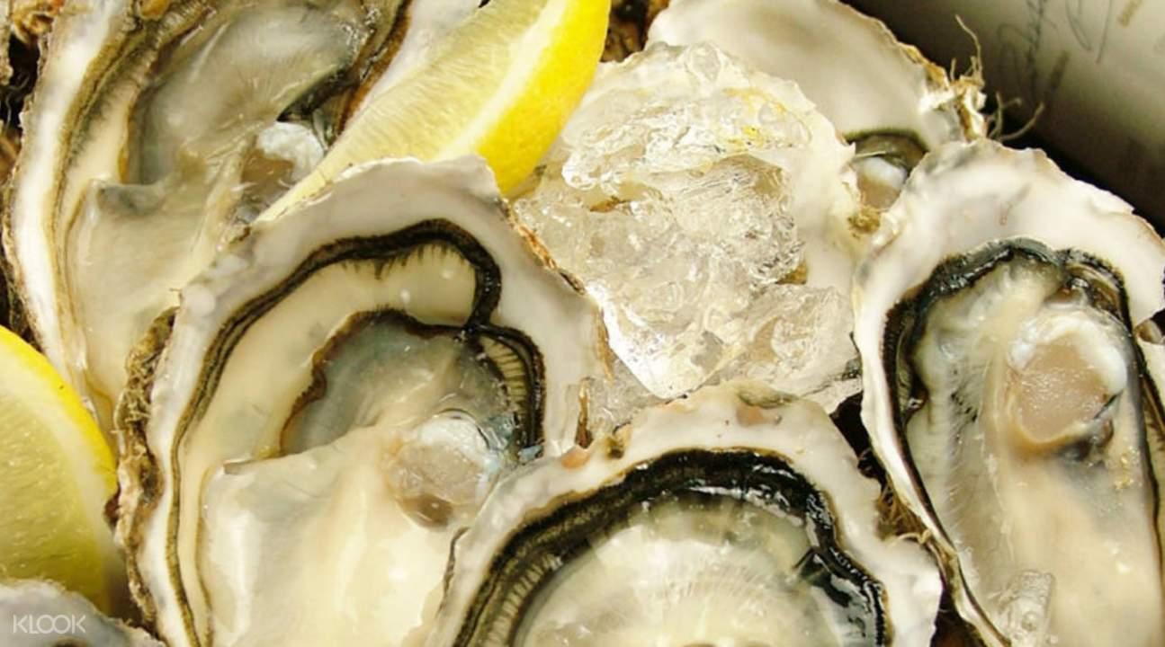 Hokkaido Shiretoko Gyojo in Osaka Japan oyster