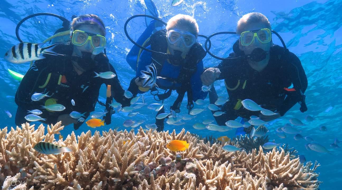 银梭号外堡礁游船 & 直升机观景体验一日游,阿金考特外堡礁,阿金考特外堡礁直升机游