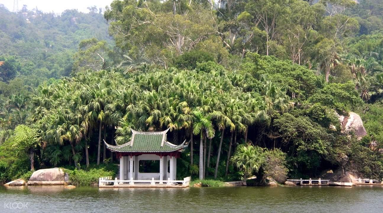 厦门植物园湖景