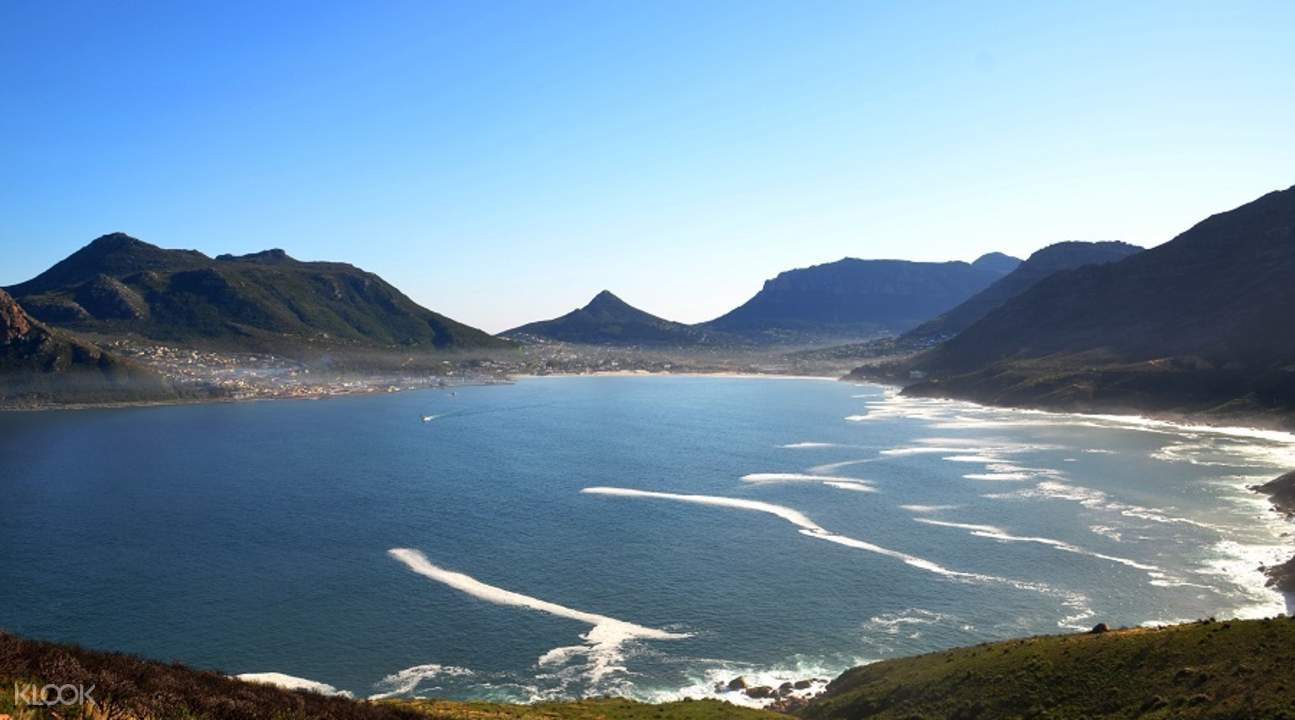 hout bay cape peninsula half day tour from cape town