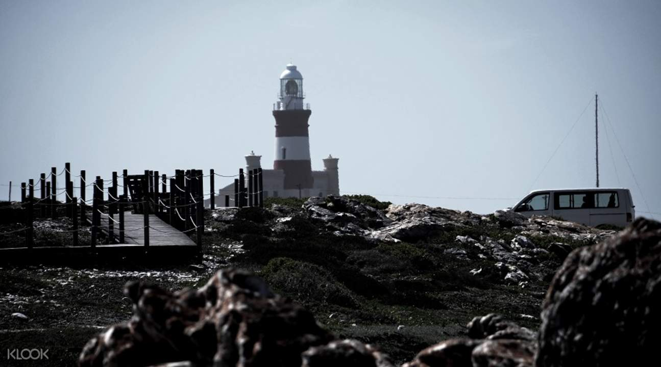 cape agulhas full day tour from cape town