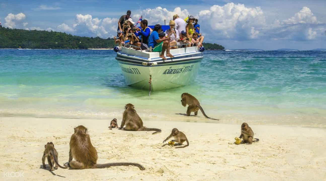 maya bay speedboat tour tickets, monkey island tour, speedboat to maya bay phi phi island