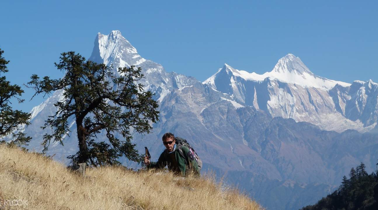 hike Ghorepani Poon Hill Trek