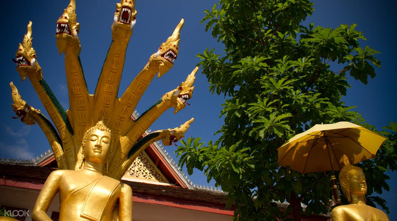 half day tour of luang prabang