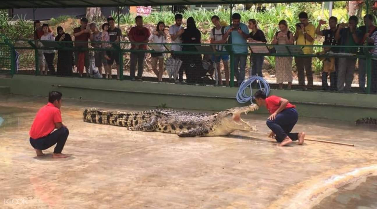 兰卡威鳄鱼公园