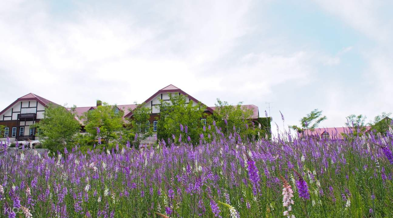 北海道由仁花園