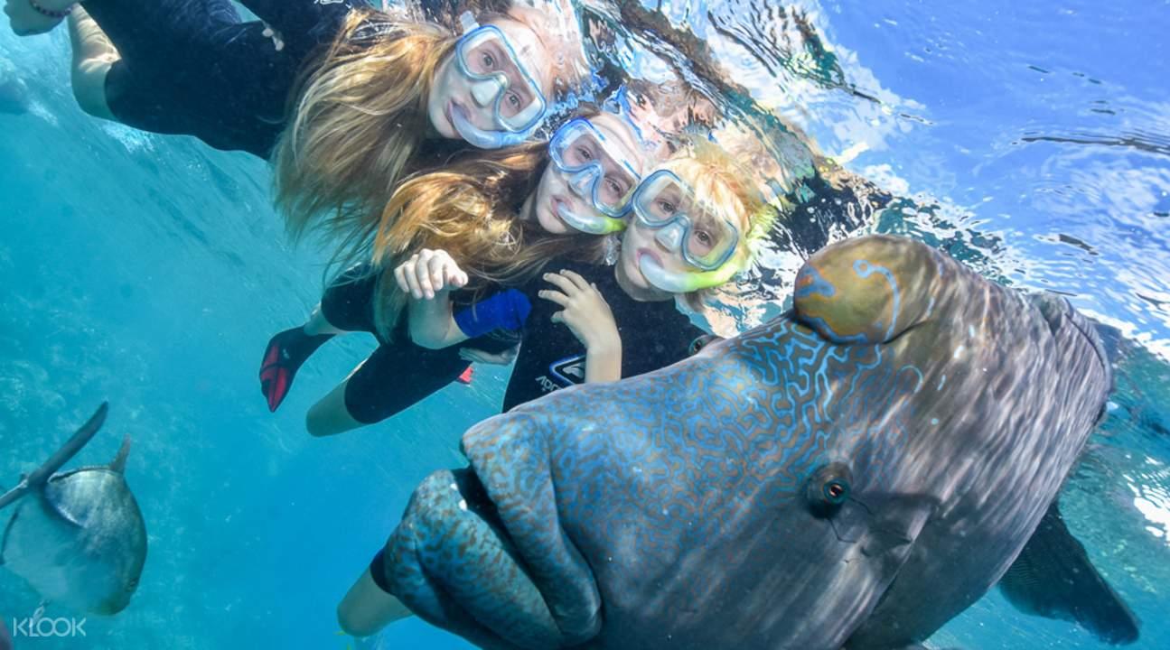 Sunlover great barrier reef cruise
