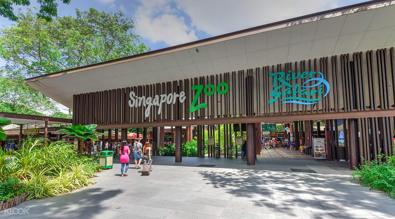新加坡动物园+河川生态园套票