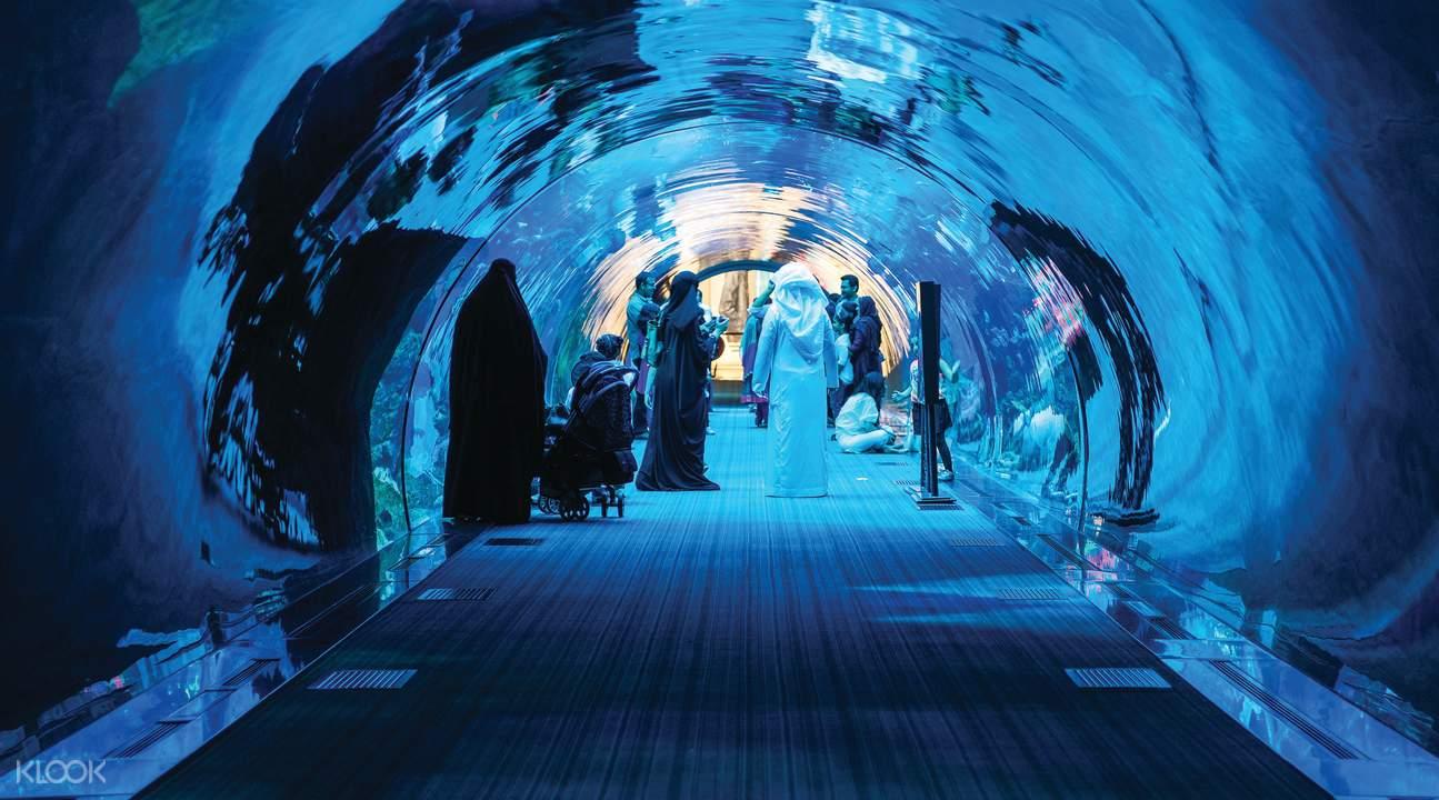 พิพิธภัณฑ์สัตว์น้ำและสวนสัตว์ใต้น้ำดูไบ