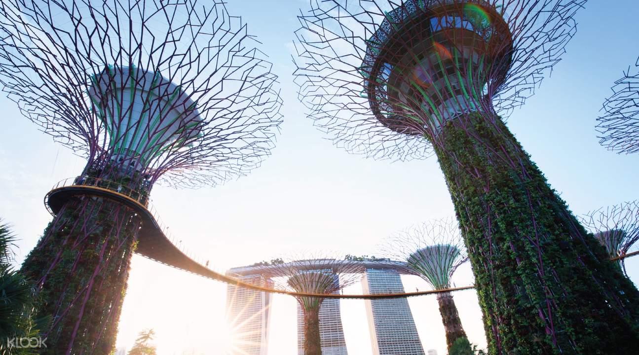新加坡观光套票滨海花园