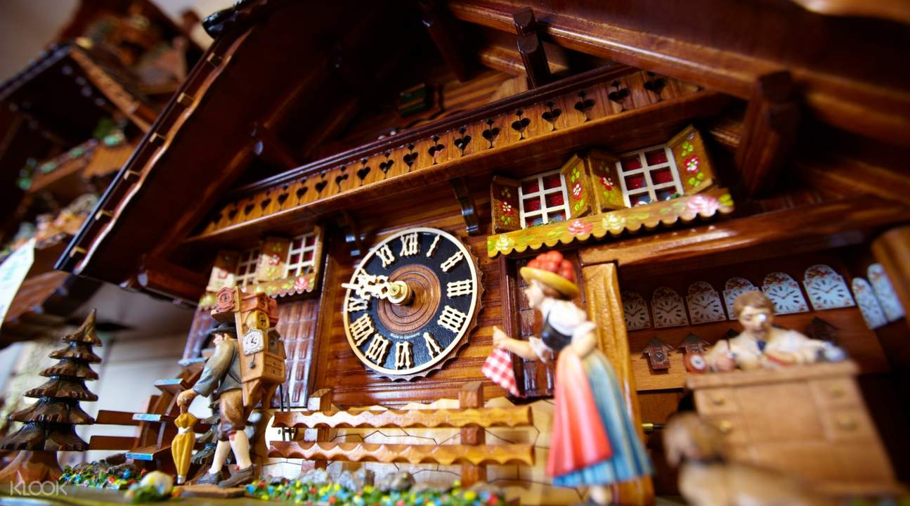 Black Forest, Titisee, and Rhine Falls Day Tour from Zurich