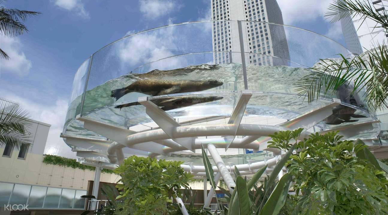 東京陽光水族館