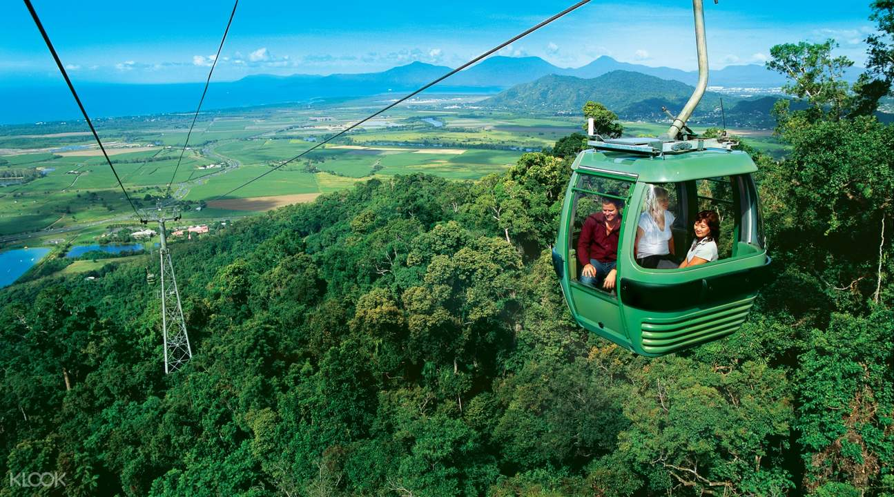 Rainforest Skyrail Cableway