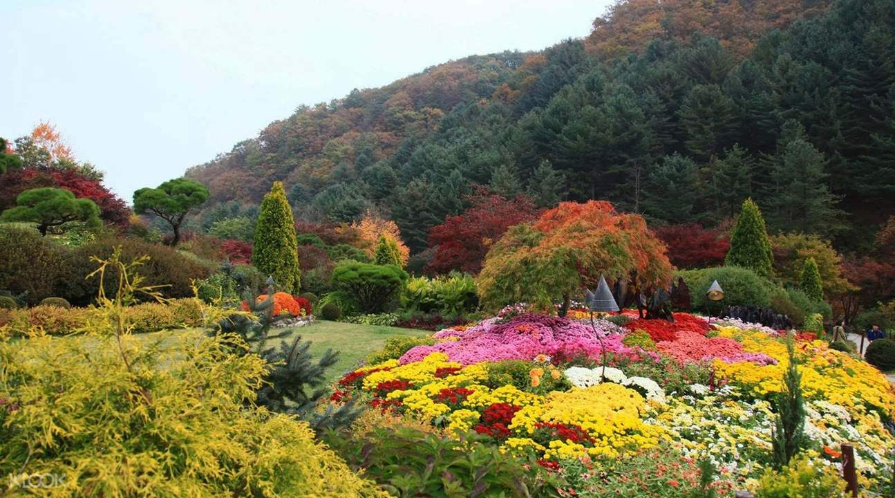 晨靜樹木園